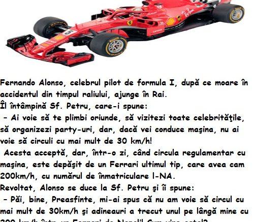 Fernando Alonso in Paradis, sportivi in Paradis, banc sportivi, banc cu sportivi, banc cu sportivi, banc cu sportivi in Paradis, bancuri cu sportivi, bancuri sportivi, bancuri despre sportivi, bancuri sportivi 2020, bancuri sportivi noi, bancuri sportivi tari, bancuri cu sportivi tari, bancuri cu sportivi 2020, cele mai tari bancuri cu sportivi, cele mai bune bancuri cu sportivi, top 10 bancuri sportivi, top 10 bancuri cu sportivi,