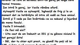 Banc cu Vasile si furtul unui autobuz, bancuri cu Vasile